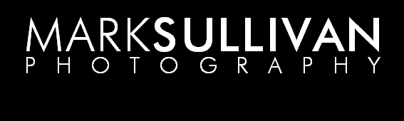 MARK SULLIVAN PHOTOGRAPHY - Carlisle, Cumbria, Lake District and South West Scotland Documentary Wedding, Family, Portrait, Pet, Commercial and Freelance Photographer